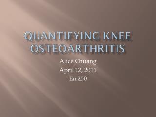 Quantifying knee osteoarthritis