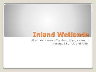 Inland Wetlands