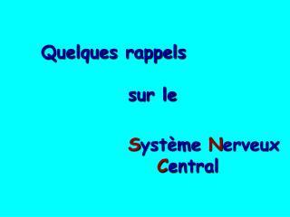 Organisation g n rale et fonctionnelle du   syst me nerveux central.