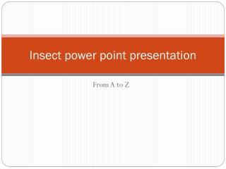 Insect power point presentation