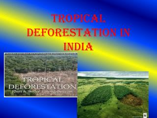 Tropical Deforestation in India