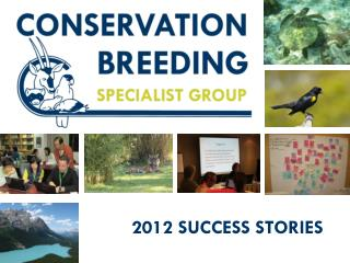 2012  SUCCESS STORIES