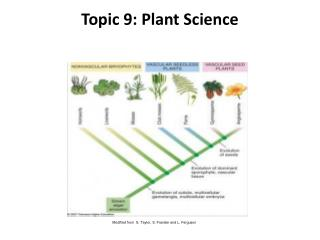 Topic 9: Plant Science