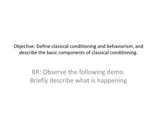 BR: Observe the following demo. Briefly describe what is happening