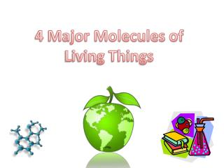 4 Major Molecules of Living Things