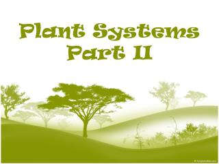 Plant Systems Part II