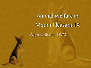 Animal Welfare in Mount Pleasant TX