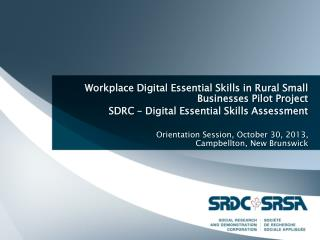 Workplace Digital Essential Skills in Rural Small Businesses Pilot Project