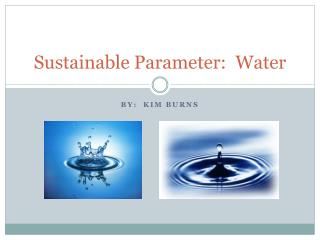 Sustainable Parameter:  Water