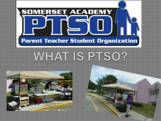 WHAT IS PTSO?