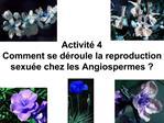 Activit  4  Comment se d roule la reproduction sexu e chez les Angiospermes