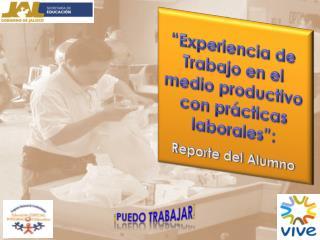 """""""Experiencia de Trabajo en el medio productivo con prácticas laborales"""": Reporte del Alumno"""