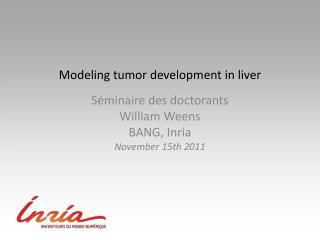 M odeling tumor development in liver