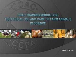 CCAC Training Module on: the Ethical Use and Care of Farm Animals in Science