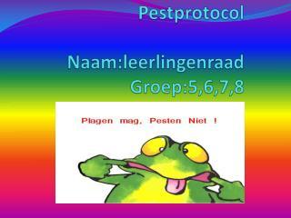 Pestprotocol Naam:leerlingenraad Groep:5,6,7,8