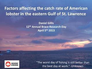 Factors affecting the catch rate of American lobster in the eastern Gulf of St. Lawrence