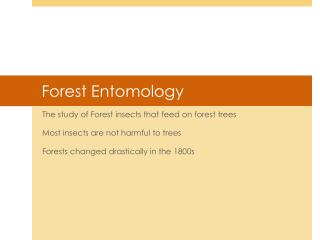 Forest Entomology