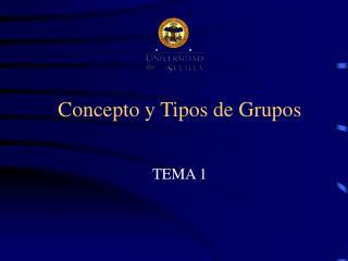 Concepto y Tipos de Grupos