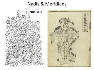 Nadis  & Meridians