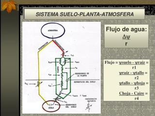 SISTEMA SUELO-PLANTA-ATMOSFERA