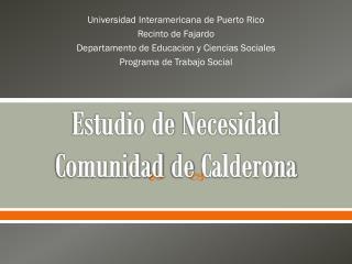 Estudio de  Necesidad Comunidad  de  Calderona