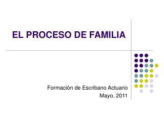 EL PROCESO DE FAMILIA