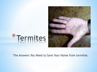 Termites - The Answers You Need to Save Your Home from termi