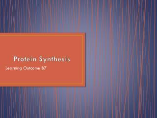 Protein Synthesi s