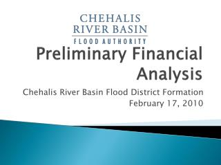Preliminary Financial Analysis