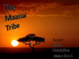 The    Maassai  Tribe