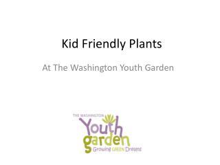 Kid Friendly Plants