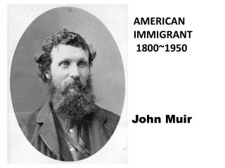 American immigrant   1800~1950