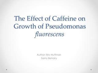 The  Effect  of Caffeine  on Growth of  Pseudomonas  fluorescens