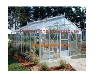 Pests of the greenhouse