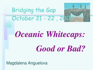 Oceanic Whitecaps:           Good or Bad?