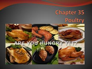 Chapter  35 Poultry