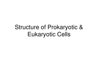 Structure of Prokaryotic  Eukaryotic Cells