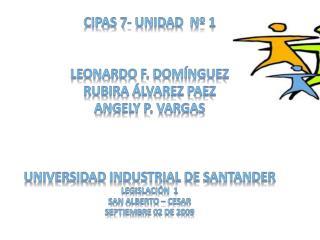 Cipas 7- unidad  nº 1 Leonardo f. Domínguez Rubira Álvarez  paez Angely p. Vargas
