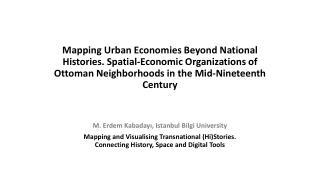 M.  Erdem Kabaday ı ,  Istanbul  Bilgi University