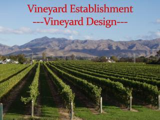 Vineyard Establishment ---Vineyard Design---