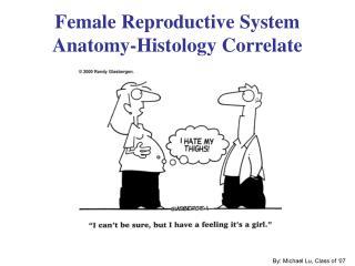 Female Reproductive System Anatomy-Histology Correlate