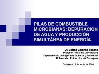 PILAS DE COMBUSTIBLE MICROBIANAS: DEPURACI N DE AGUA Y PRODUCCI N SIMULT NEA DE ENERG A