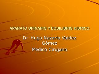 APARATO URINARIO Y EQUILIBRIO HIDRICO