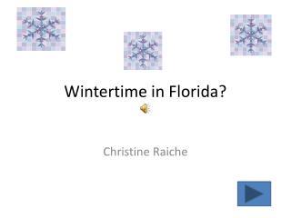 Wintertime in Florida?