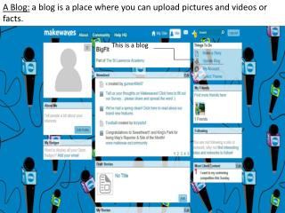 A Blog:  a blog is a place where you can upload pictures and videos or facts.