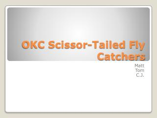 OKC Scissor-Tailed  F ly Catchers