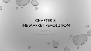 Chapter 8 The Market revolution
