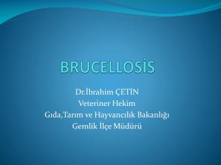 BRUCELLOSİS