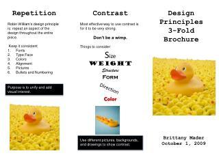 Design Principles 3-Fold Brochure