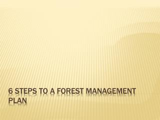 6  Steps  to a Forest Management Plan